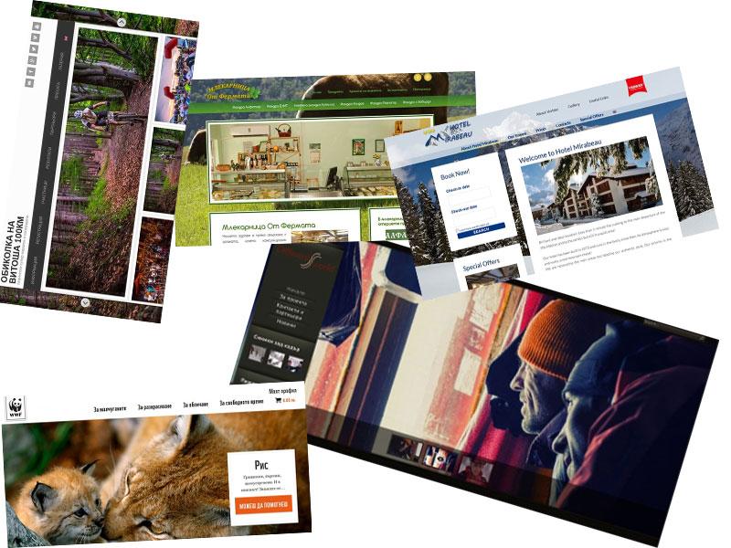 информационни уеб сайтове